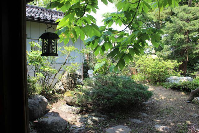 広い庭がある富山の保護猫カフェ、月猫カフェ