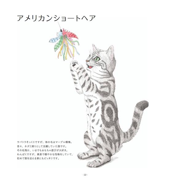 猫の塗り絵(アメリカンショートヘア)、完成形
