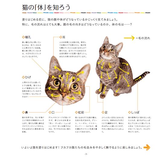 猫の顔&体のパーツ解説付き