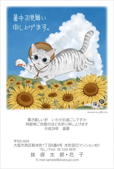 猫の暑中見舞い、ひまわり畑で追いかけっこニャッ!