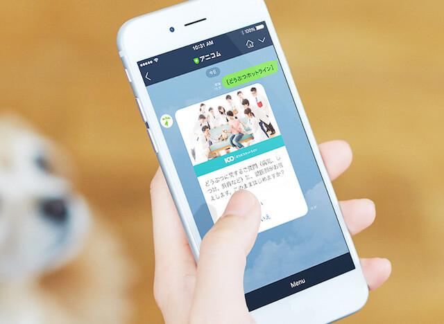 LINEのアプリで獣医師に相談するイメージ