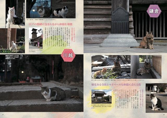 川越、鎌倉の和猫