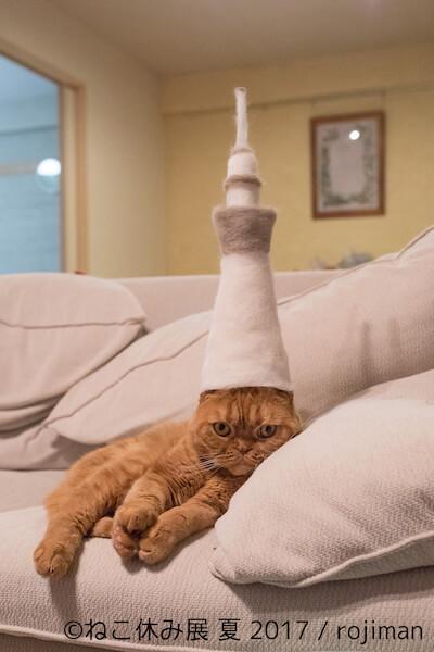 rojiman氏が猫の毛で作った帽子
