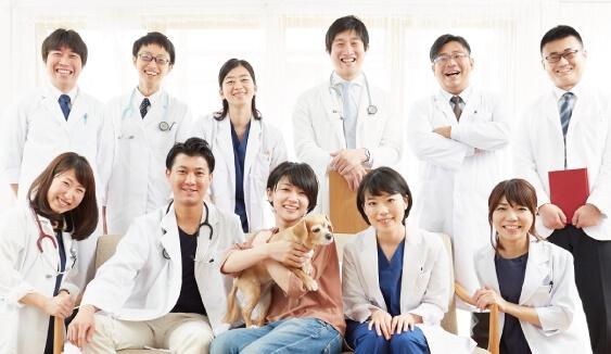 たくさんの獣医師による相談できる安心感