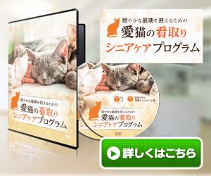 愛猫の看取り・シニアケアプログラム(DVD)
