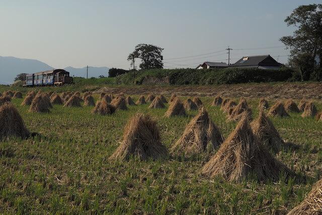 希代 真宏/@カレチさんの鉄道写真、田園風景を走る鉄道