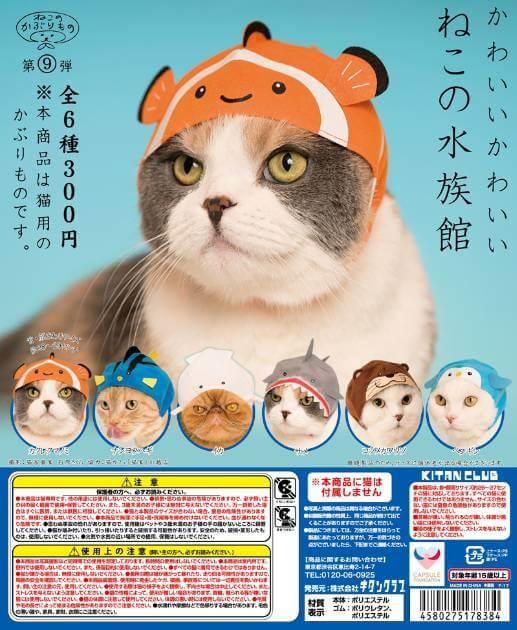キタンクラブから発売される猫のかぶもの「かわいい かわいい ねこの水族館」