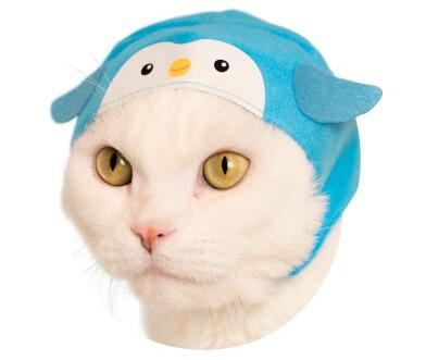 猫のかぶもの「ペンギン」