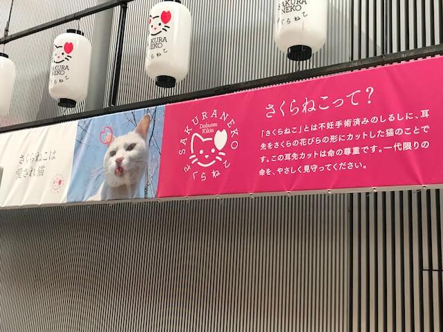 曽根崎お初天神通商店街アーケードの「さくらねこ」説明パネル