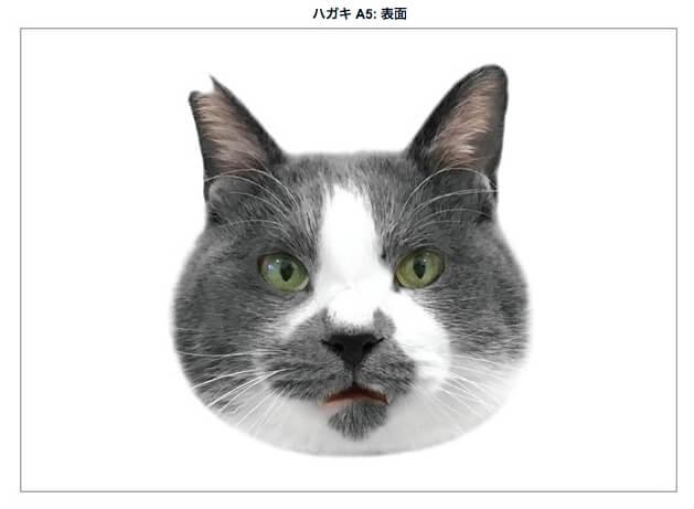 人気ネコ「くまお」の顔カード