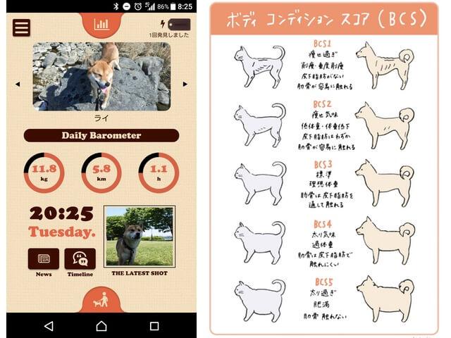 ペットの体重カレンダーFanimalアプリ、BCSなどを記録する機能を追加