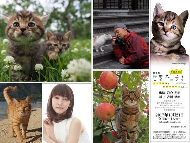 劇場版「岩合光昭の世界ネコ歩き」公開日が決定!ナレーションは吉岡里帆