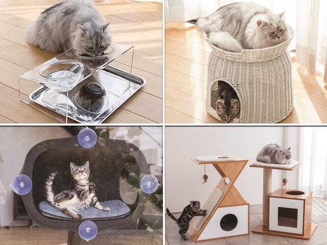 通販サイトのディノスから新発売されたオシャレな猫用アイテム4選