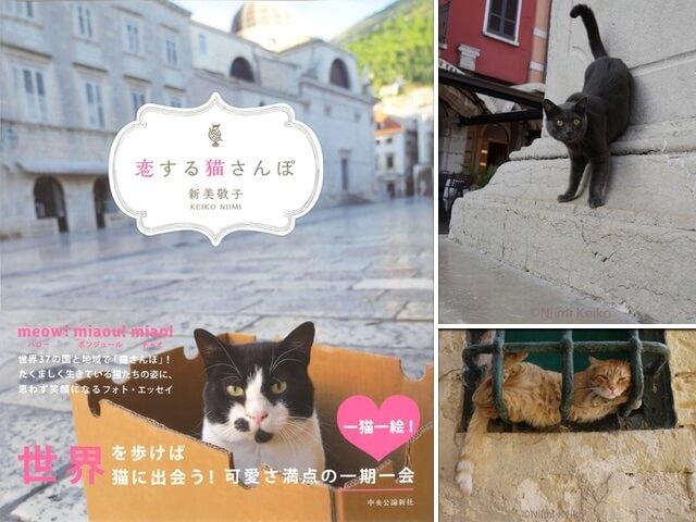 犬猫写真家・新美敬子さんの新しいフォトエッセイ「恋する猫さんぽ」