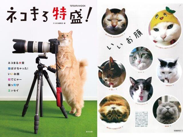 ネコ専門投稿誌の歴代大賞作品を収録したムック本「ネコまる特盛!」