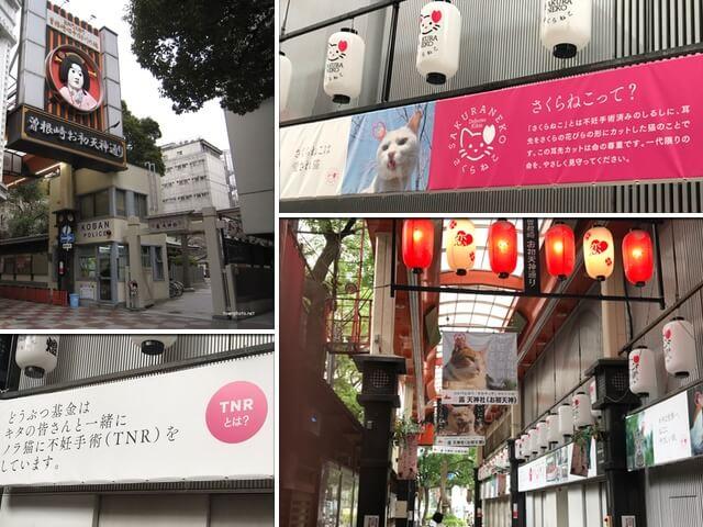 大阪キタ・梅田駅近くの商店街を「さくらねこ」が3年間ジャック中
