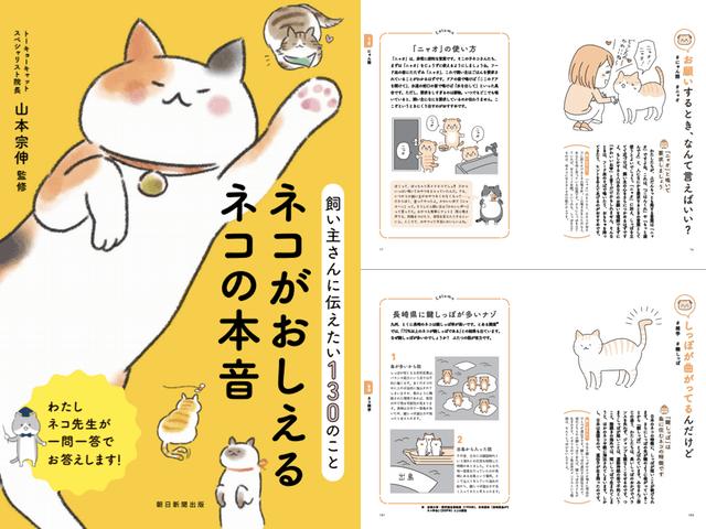 猫の目線で学べる新感覚の実用書「ネコがおしえるネコの本音」
