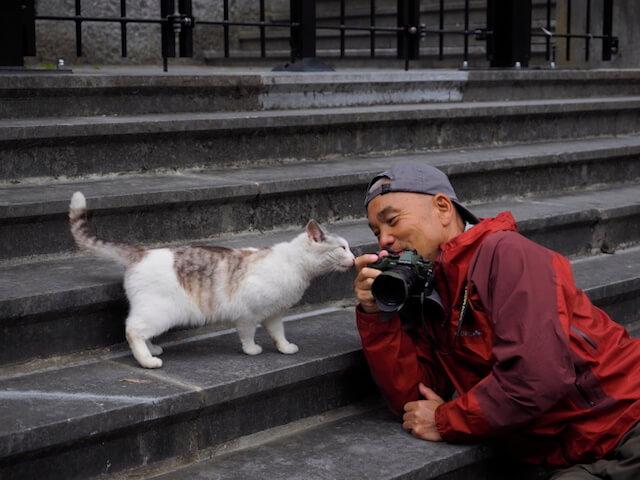動物写真家・岩合光昭