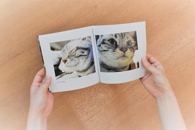 しまうまプリントで作成した猫のフォトブック(中身)