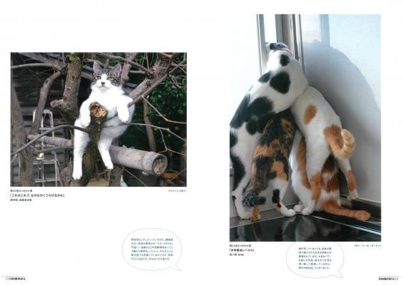 ムック本「ネコまる特盛!」に収録されている投稿誌「ネコまる」の大賞作品
