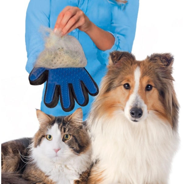 手袋タイプのペット用ラバーブラシ「トゥルータッチ」