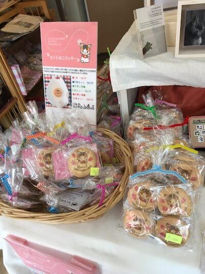 「こにゃんこ展」で販売中のさくらねこクッキー