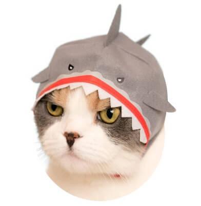 猫のかぶもの「サメ」