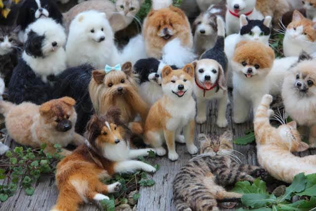 中山みどりフェルトアート展、犬や猫の羊毛フェルト展示作品