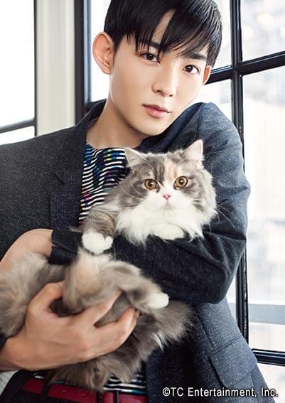 俳優「竜星涼」×猫「ミヌエット」の写真