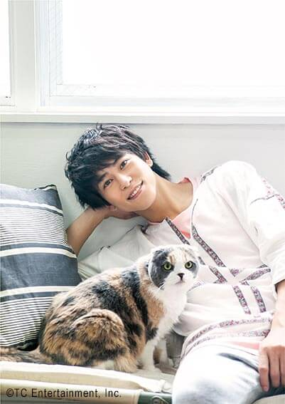 俳優「佐野岳」×猫「スコティッシュフォールド」の写真