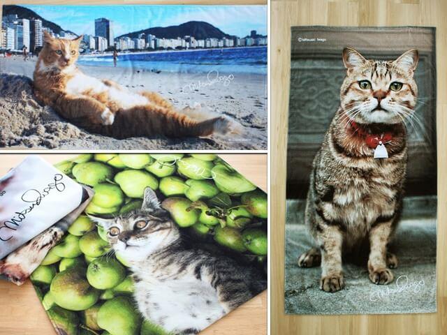 海やプールに持ってくニャ!岩合光昭さんの猫ビーチタオルが登場