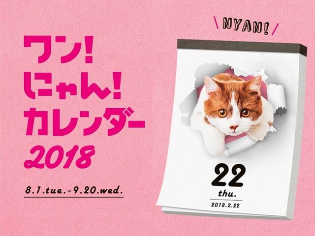 愛猫の写真がカレンダーになるチャンス♪ ワンにゃんカレンダー2018