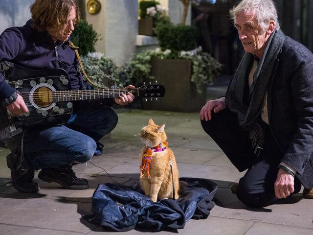 来週公開の映画「ボブという名の猫 」メイキング映像を公開