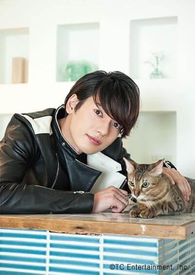 俳優「崎山つばさ」×猫「ベンガル」の写真