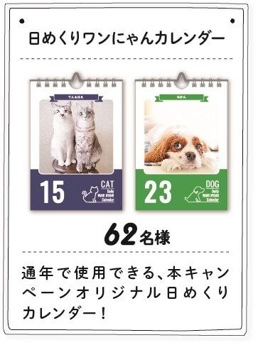 ワン!にゃん!カレンダー2018の賞品、日めくりワンにゃんカレンダー
