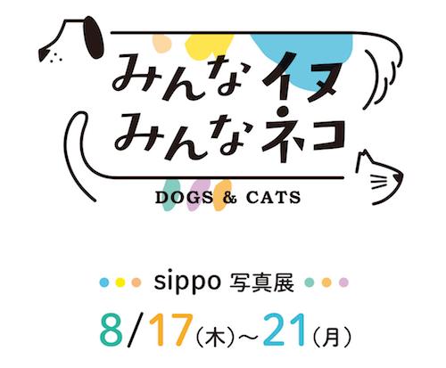 sippo写真展「みんなイヌ、みんなネコ」