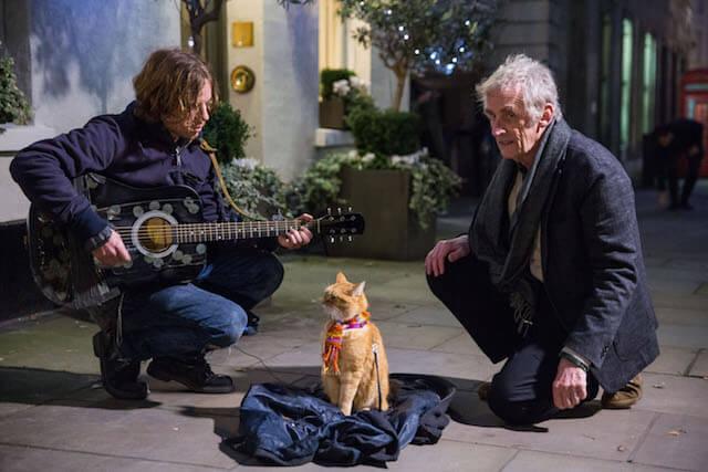 映画「ボブという名の猫 幸せのハイタッチ」のメイキング映像&撮影シーン