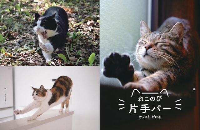 片手パーのポーズ by 書籍「のび猫ストレッチ」