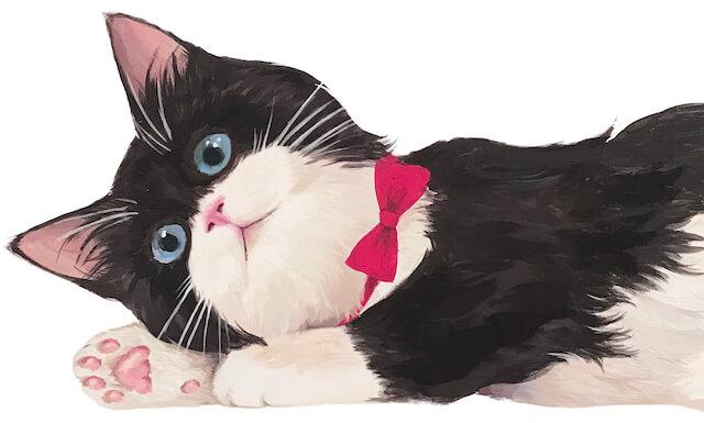 ぷにぷに猫の手ファンデのパッケージにデザインされている靴下猫