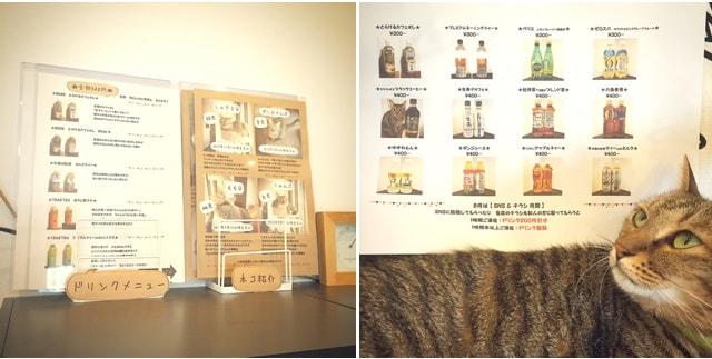 猫の紹介パネル&ドリンクメニュー by キジトラ専門の猫カフェ「cat cafe しましま屋」