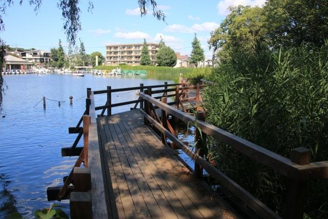 石神井公園のイメージ写真