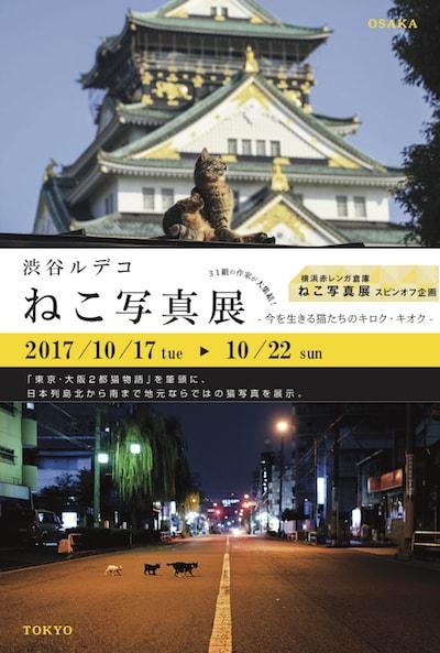 『渋谷ルデコ ねこ写真展』~今を生きる猫たちのキロク・キオク~