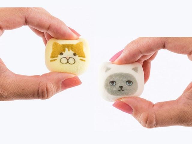雑貨ブランドのKOZACLA(コザクラ)とKEORA KEORA(ケオラケオラ)がデザインした猫イラストの鳳瑞(ほうずい)