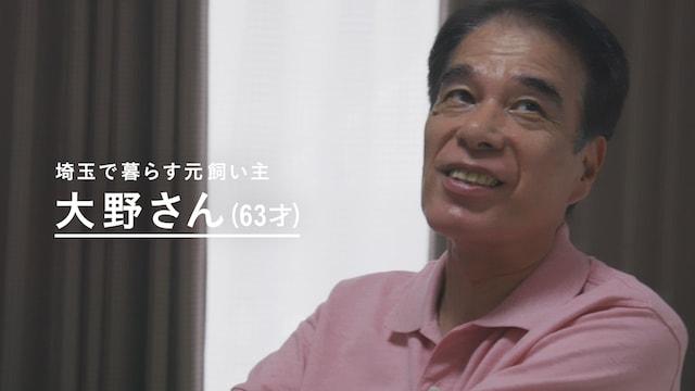 元・飼い主さんの大野さん by カルカン敬老の日動画「KAL KAN VOICE DELIVERY」