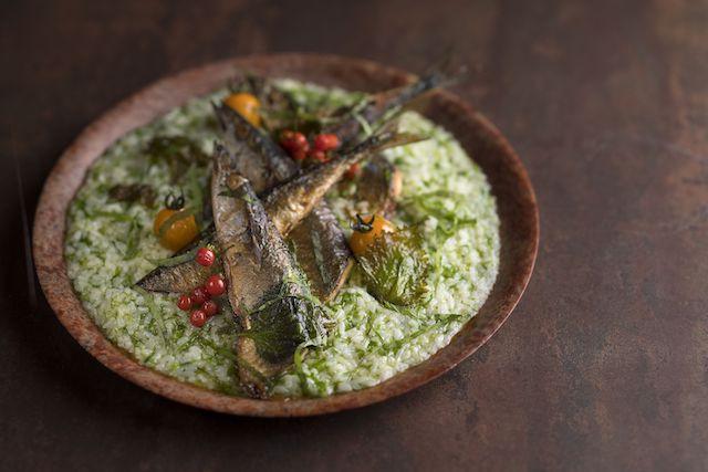 サンマのグリル しその香り 海苔のリゾットと共に、オータム&ハロウィーンブッフェ