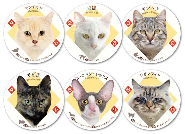 猫がデザインされた「ねこトランプ」のダイヤ柄1