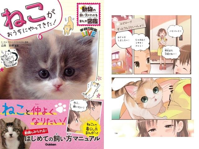 猫の飼い方がわかるマンガ図鑑「ねこがおうちにやってきた!」