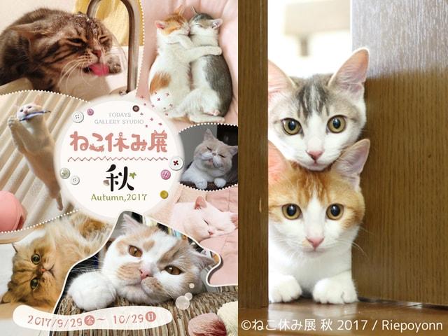 ネコ作品の展示即売会「ねこ休み展 秋 2017」が9/29〜名古屋で開催