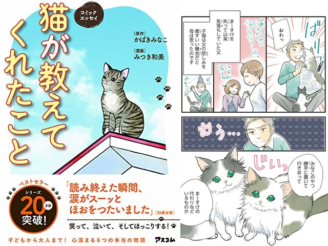 猫と人間の感動物語、コミックエッセイ「猫が教えてくれたこと」
