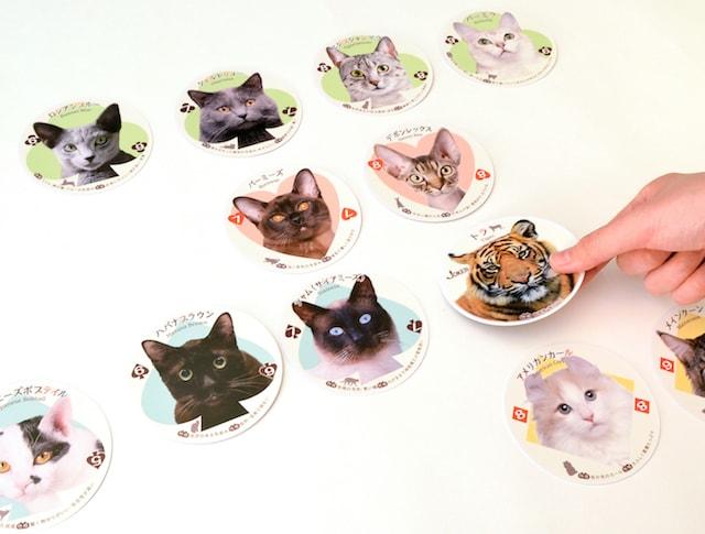 ねこトランプの遊び方、猫ならべ